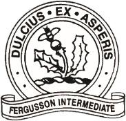 Fergusson Intermediate Logo